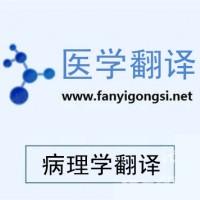 深圳沟通翻译专业印尼语翻译