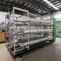 养鸡设备/优质肉鸡笼养设备/全自动肉鸡笼养设备价格批发