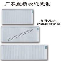 厂家直销碳纤维电暖器取暖器 可移动式壁挂式电暖器 厂家批发
