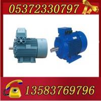 YBK3-132M2-6-5.5电机