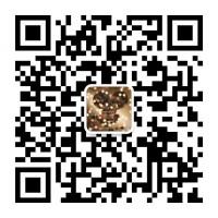 电影《唐人街探案3》能投资吗?是联合签?还是主出品?靠谱吗?