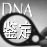 纳泓隐私DNA鉴定中心