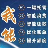 上海智还软件开发