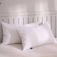 枕芯 枕头