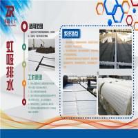 福州H20PVC 蓄排水板土工布厂家价格