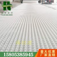 濮阳16高2公分*排水板+成卷防护排水板