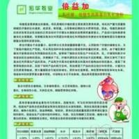 倍益加-高蛋白乳化油粉