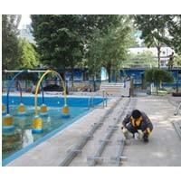 铁西游泳馆太阳能热水工程